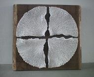 cirkelkruis op eiken b bijgesneden W