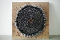 cirkelophout zwart d W